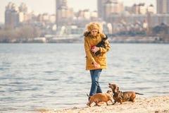 Frauenspiele mit Hunden Haustiere und Hunde, die Hunde ausbilden und erziehen Begleiter streichelt Konzept Begleiter streichelt K stockfotografie