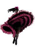 Frauentänzer, der französischen Cancan tanzt Stockbilder