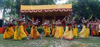 Frauentänzer, die in Holi-Feier, Indien durchführen Stockbild