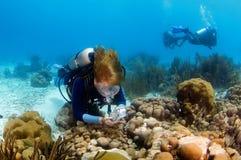 Frauentaucher, der das Riff fotografiert Lizenzfreies Stockfoto