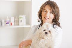 Frauentierarzt, der einen Hund anhält Lizenzfreie Stockfotografie