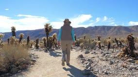 Frauentourist geht auf einen Cholla-Kaktus-Garten, Zeitlupe, 4K stock footage