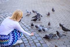 Frauentouristen- oder -bürgerwurf zerkrümelt für Tauben Entspannende Stadtplatz- und Fütterungstauben der Mädchenblondine Mädchen stockfotos
