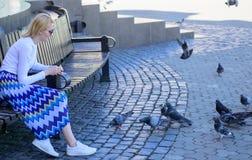 Frauentouristen- oder -bürgerwurf zerkrümelt für Tauben Gruppentauben auf Stadtplatzwartefestlichkeiten Fütterungstaubenvögel des stockbild