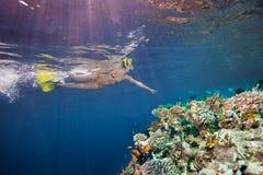 Frauenunterwasseratemgerättaucher, der auf Korallen zeigt Stockfoto