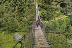 Frauenwanderer auf dem Trekkingsweg, der eine Schrägseilbrücke kreuzt stockfotos