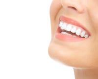 Frauenzähne Stockbild