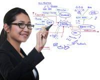 Frauenzeichnungs-Ideenvorstand des Geschäftsprozesses lizenzfreie stockfotografie