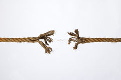 Frayed rope. On a white background stock images