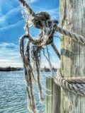 Frayed Rope Knot. Closeup view of an old wooden dock mooring with frayed rope knot on a sunny day with clear blue water royalty free stock image
