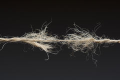 Frayed rope ready to break. On dark background royalty free stock photo