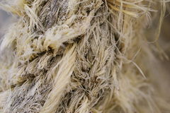 Frayed rope Royalty Free Stock Images