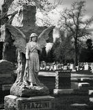 Frazzini Angel over Grave. An angel statue over a grave at Olingers Cemetery in Lakewood Colorado Stock Images