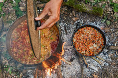 förbereda sig för campfiremat Royaltyfria Bilder