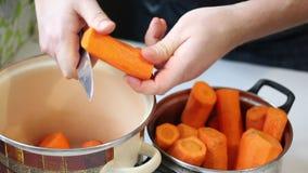 Förberedelse av morotfruktsaft stock video