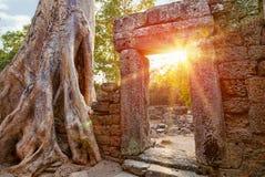 Fördärvar av den kambodjanska templet Royaltyfri Bild