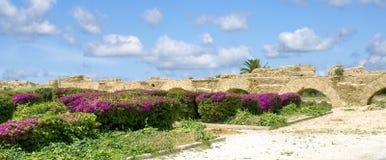Fördärvar av en akvedukt i Carthage, Tunisien Royaltyfri Bild