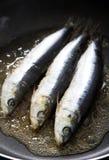 Freír la sardina Imágenes de archivo libres de regalías