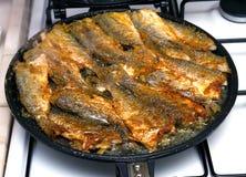 Freír pescados Imagen de archivo libre de regalías