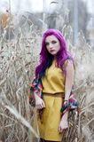 Freak girl with violet hair. Freak girl with purple hair in high autumn grass Royalty Free Stock Images