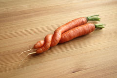 A freak of nature. Two entwined carrots (a freak of nature Stock Photo