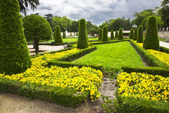Freakish trees and flower beds Stock Image