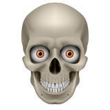 Freaky Human Skull Royalty Free Stock Photo