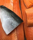 Freash三文鱼美丽的内圆角  免版税库存照片