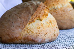 Freash bread Royalty Free Stock Photos