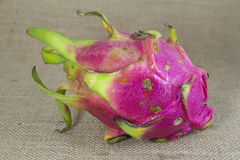 Freash Dragon Fruit Stock Photo