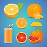 Freash orange fruit with green leaves. sliced orange vector illustration. Freash orange fruit with green leaves. sliced orange vector Royalty Free Stock Photography