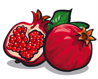 Freash pomegranates Royalty Free Stock Images