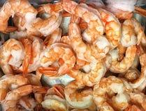 Freashly gekookte garnalen klaar te eten Stock Foto's