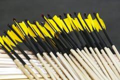 Frecce di legno di tiro con l'arco con i nocks di plastica con le piume Immagine Stock Libera da Diritti