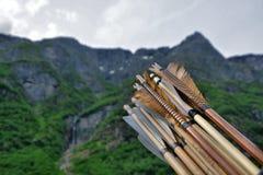 Frecce di Viking Immagine Stock