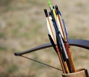 Frecce nuovissime nel fremito Fotografie Stock Libere da Diritti