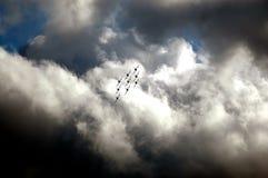 Frecce Tricolori - akrobatiskt lag för italienskt flygvapen Arkivfoto