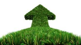Freccia dal modo dell'erba, simbolo ecologico Fotografie Stock