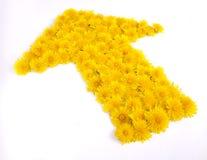 Freccia del fiore Fotografia Stock Libera da Diritti