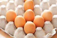 Freccia dell'uovo Immagine Stock Libera da Diritti