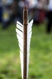 Freccia di piumaggio per tiro con l'arco Fotografie Stock