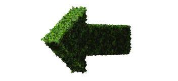Freccia fatta dalle foglie verdi isolate su fondo bianco 3d rendono Fotografia Stock
