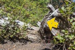 Freccia indicante sinistra Fotografie Stock Libere da Diritti