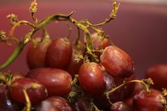 Frech grapes in a bowl Royalty Free Stock Photo