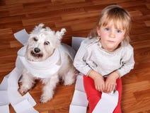 Freches Kind und weißer Schnauzerwelpe, die an sitzt stockfotografie