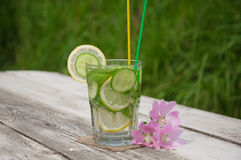 Freches Wasser in einem Glas Stockfotos
