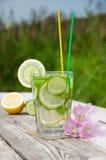 Freches Wasser in einem Glas Lizenzfreies Stockfoto