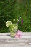 Freches Wasser in einem Glas Lizenzfreie Stockbilder