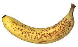 Freckled banana. A ripe banana with freckled skin, isolated on white stock image