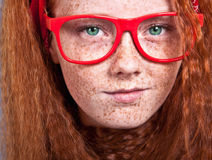 Freckled beauty Stock Images